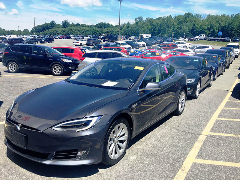A row of Tesla Model S at the auction yard.